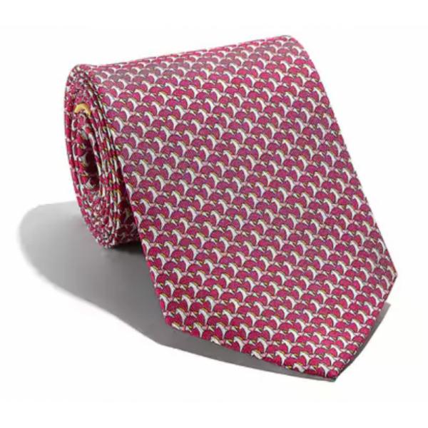 Salvatore Ferragamo -  Pink Silk Tie